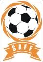 ŠAFF salės futbolo čempionatas baigėsi